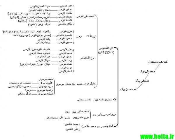 fotoohi_family tree 33