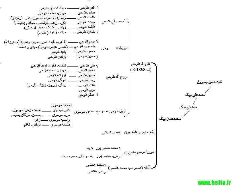 علم انساب: طایفۀ محمد حسن بیگ (فتوحیها، موسویها، حاجیپورها، هاشمیها)